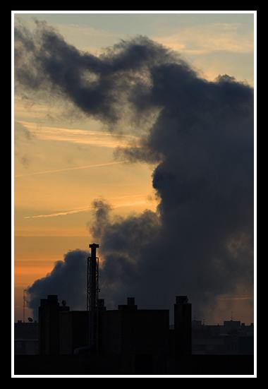 01-15-2009-zoza_17