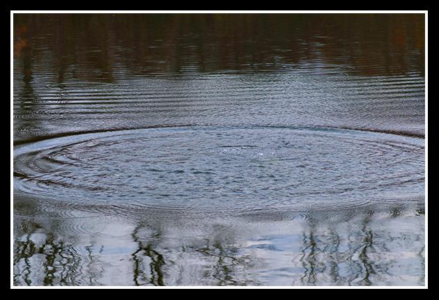 los-galachos-06-01-2009_34