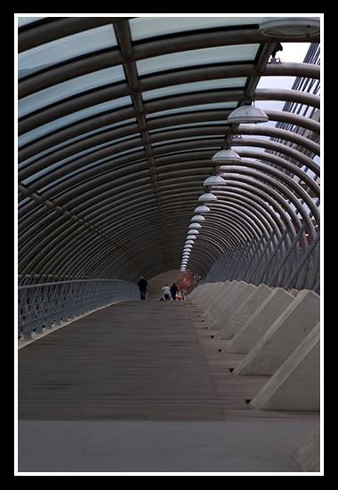 rio-ebro-28-01-2009_26