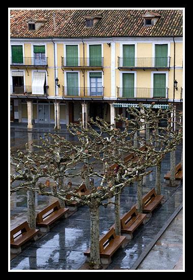 burgo-de-osma-31-01-2009
