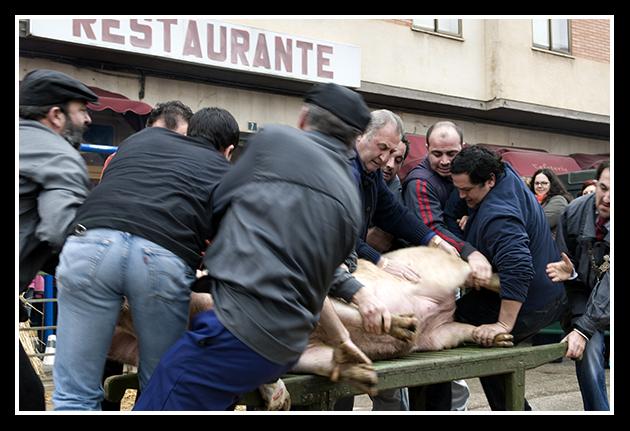 burgo-de-osma-31-01-2009_441