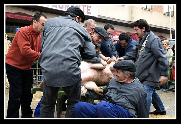 burgo-de-osma-31-01-2009_47
