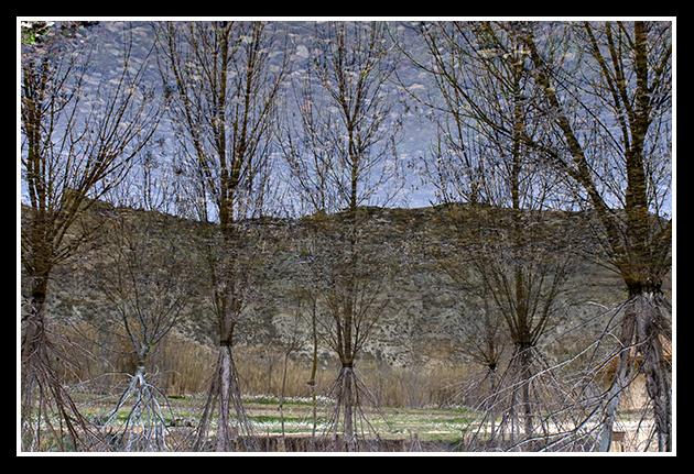 26-02-2009-los-galachos_2