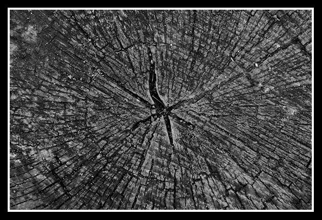 26-02-2009-los-galachos_43