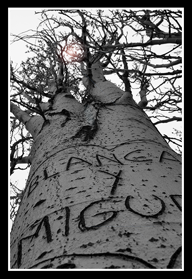 26-02-2009-los-galachos_8