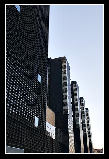 aragonia-02-19-2009_17