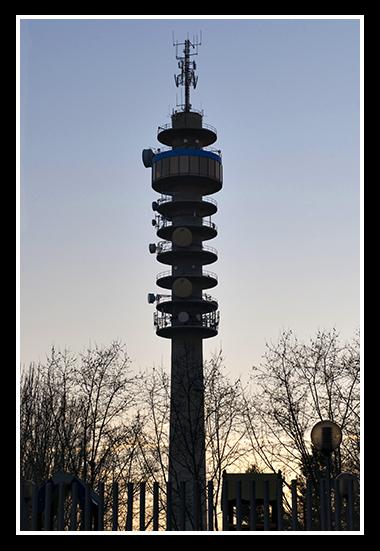 aragonia-02-19-2009_20