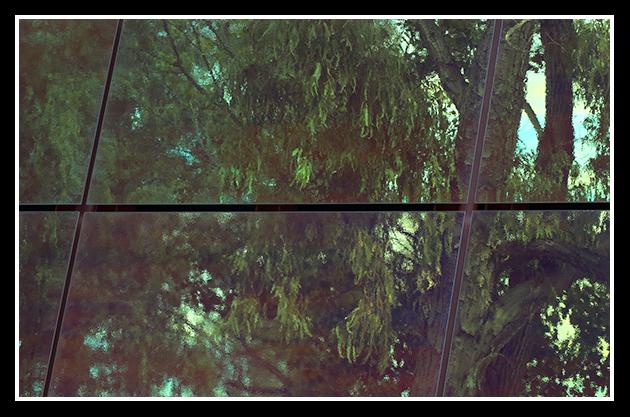 30-04-2009-ribera-del-ebri_25
