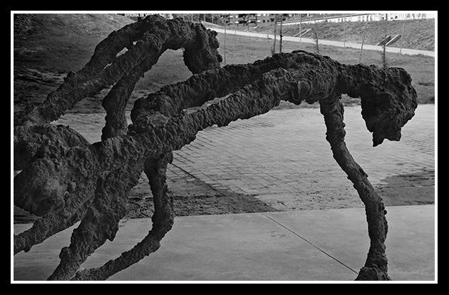 30-04-2009-ribera-del-ebri_84