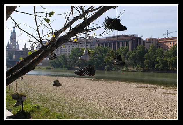 02-07-2009-ribera-del-ebro_57
