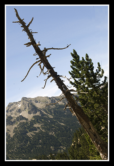 11-07-2009-haciendo-senderismo-por-el-pirineo_48