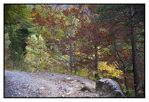 2009-10-06 Valle de Ordesa_35