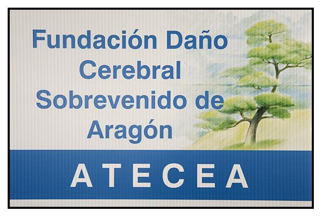 2009-11-17 ATECEA_5