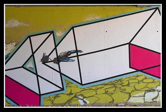 02-07-2009  Ribera del ebro_65