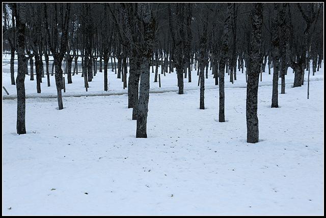 2012-12-23 pirineo_22