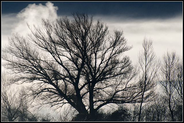 2012-12-23 pirineo_61