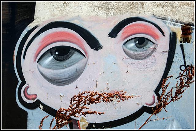 2013-08-27 graffitis