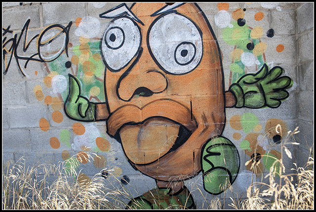 2013-08-27 graffitis_7