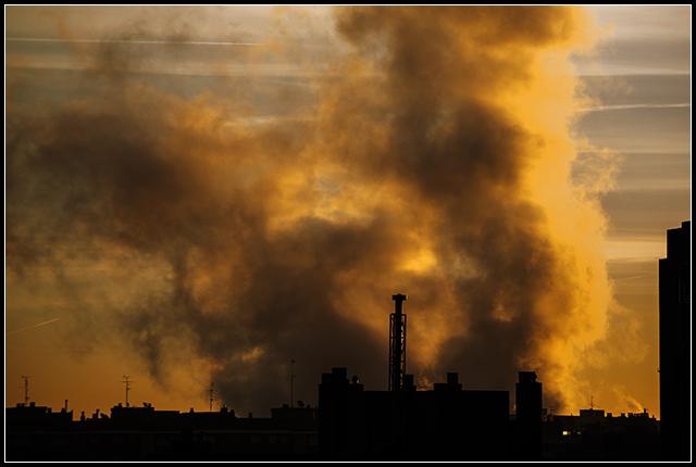 2013-12-30 humo_11