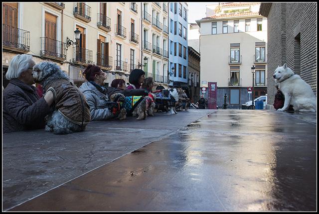 2014-01-17 S. Antón_28