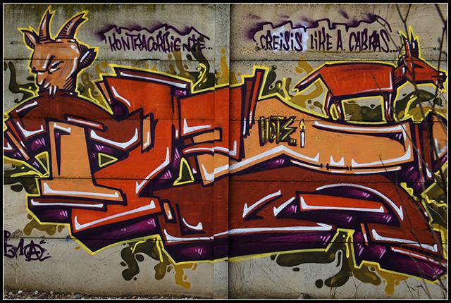 2014-01-19 Graffitis_19