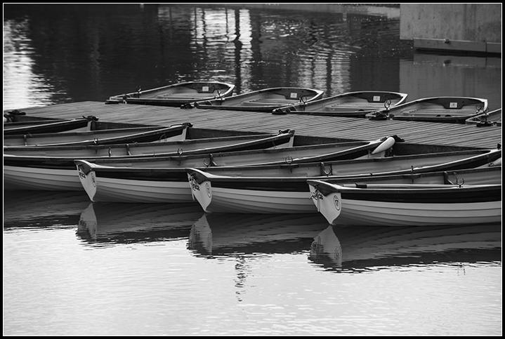 2014-06-26 p. Venecia_9
