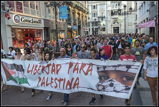 2014-07-31 Palestina_8