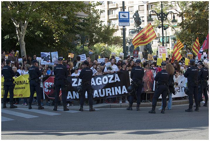 2014-10-05 A. Taurina_20