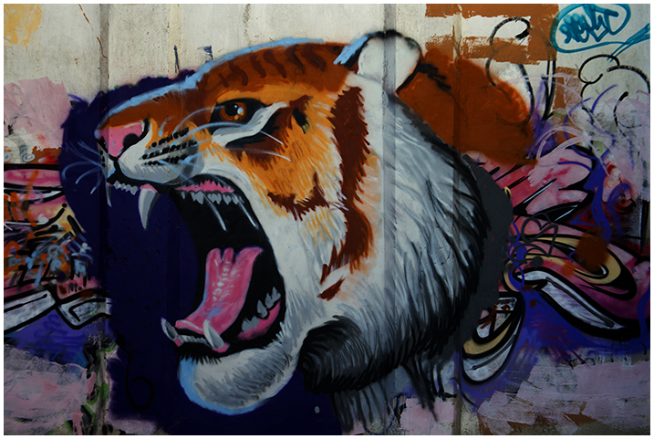 2014-10-20 graffitis_8