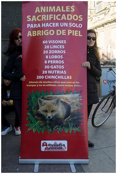 2014-11-15 A. Animal_50
