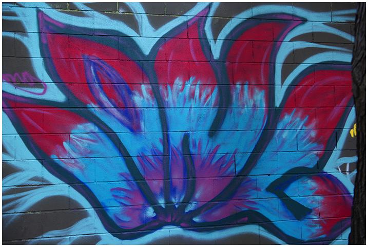 2014-12-12 Graffitis_35