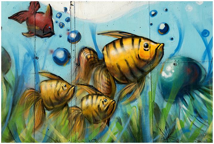 2015-01-03 Graffitis_11