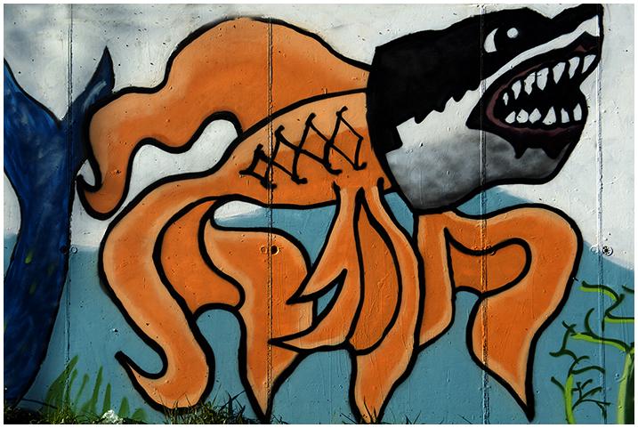 2015-01-03 Graffitis_23