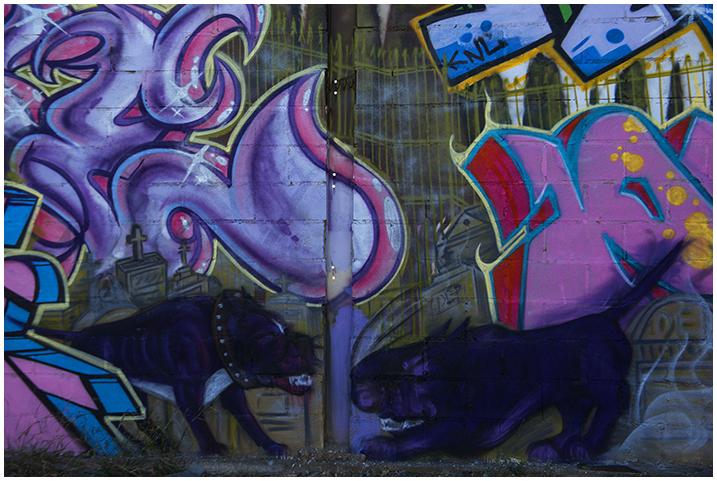 2015-01-19 Graffitis_8