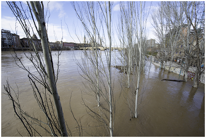 2015-02-03 Cre. del Ebro_12