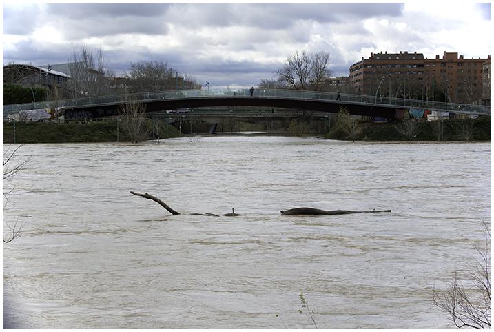 2015-02-03 Cre. del Ebro_65