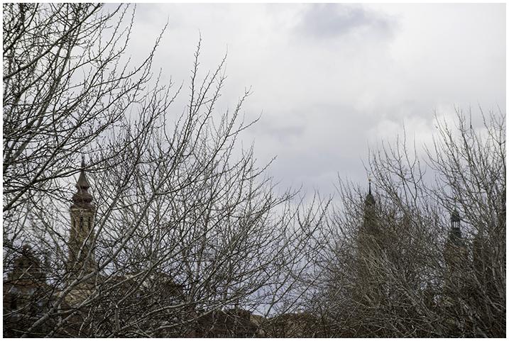 2015-02-03 Cre. del Ebro_69
