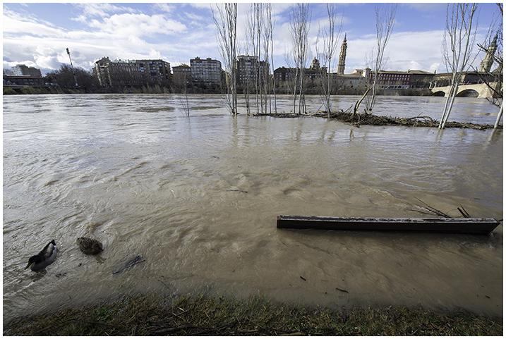 2015-02-03 Cre. del Ebro_8