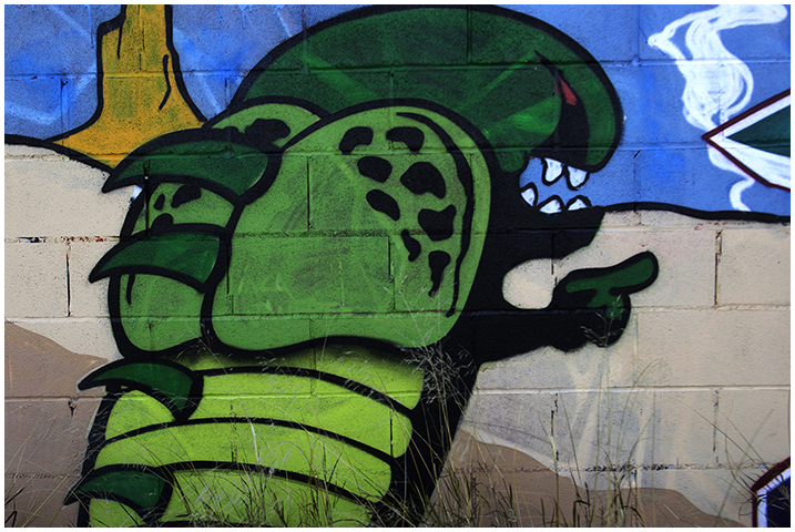 2015-02-23 Graffitis_21
