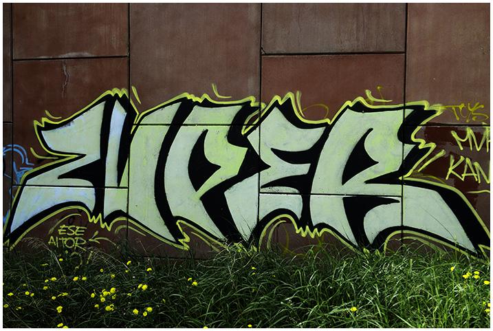 2015-05-05 Graffitis_38