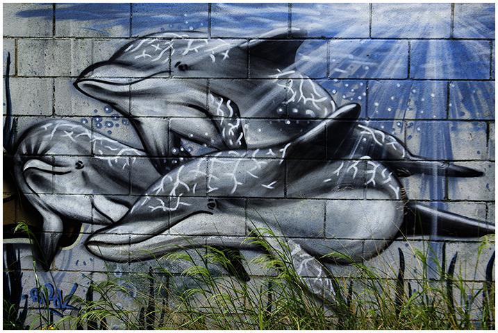 2015-05-14 graffitis_9