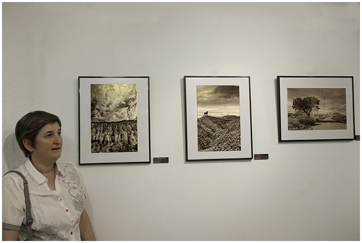 2015-05-27 Exposición_13