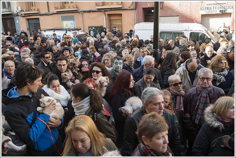 2016-01-17 San Antón_87