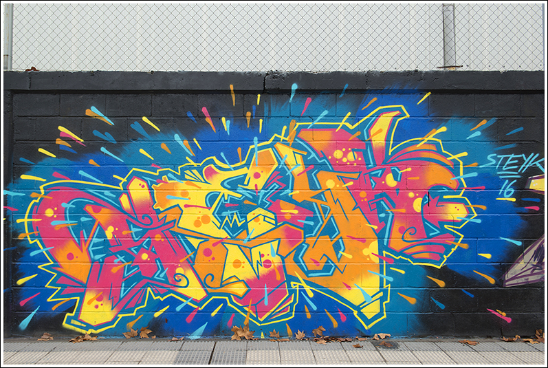 2016-01-30 graffitis_13